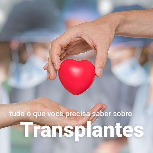 Tudo sobre Transplante